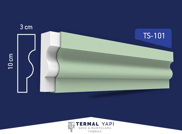 TS10-101