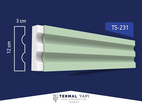 TS23-231