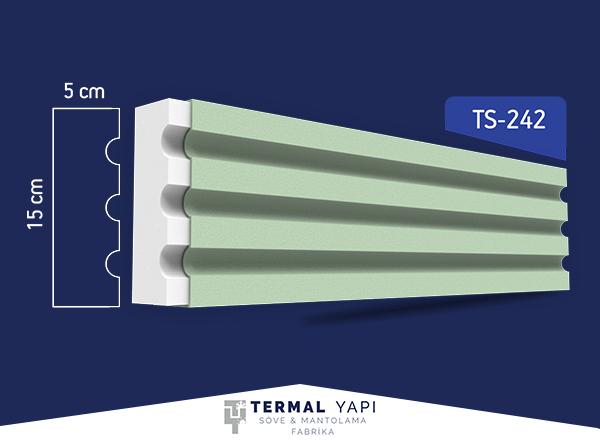 TS24-242